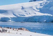 Photo of Антарктида
